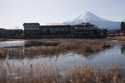 八木崎公園から見る富士山