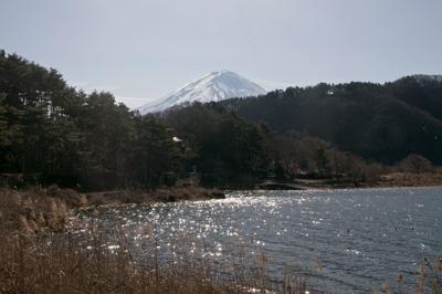 谷崎潤一郎文学碑近くから見えた富士山