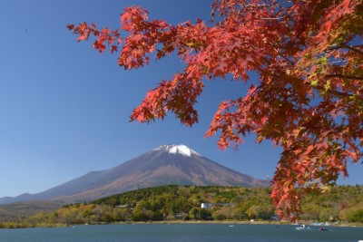 秋・山中湖