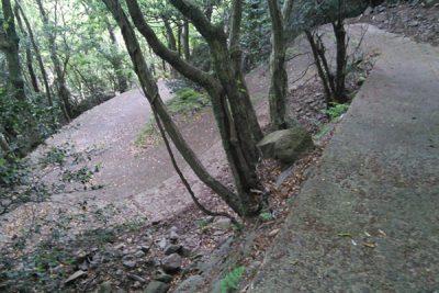 寒霞渓の山道