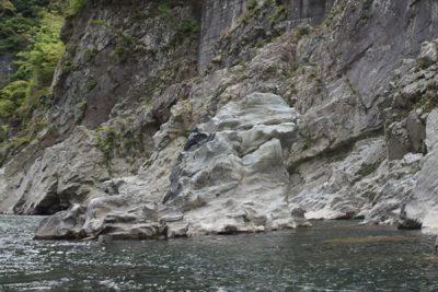 大歩危峡の獅子岩